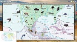 Biogeografia - Krainy zoogeograficzne