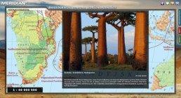 Biogeografia - Ochrona bioróżnorodności - Baobaby